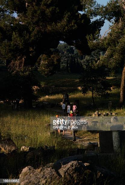 Un groupe de touristes sur le site archéologique envahi par la végétation et les pins