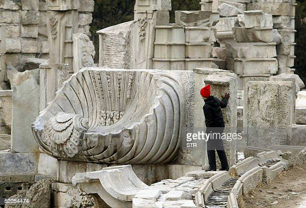 A visitor admires ruins of the Old Summer Palace in Beijing 28 February 2005 The theft of cultural relics from ancient sites and museums in China...