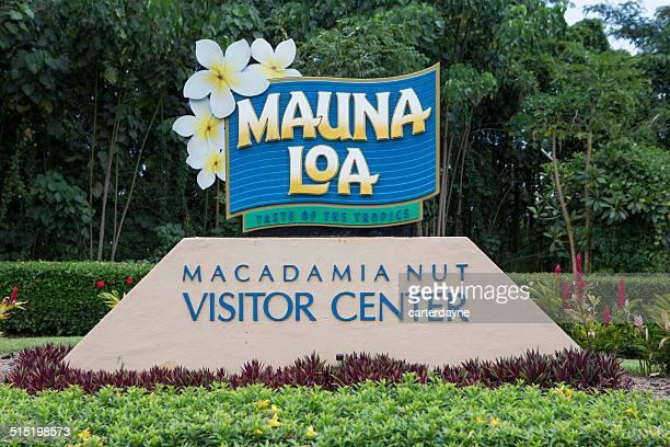 visitor center for mauna loa macadamia nut farm, hilo hawaii - macadamia nut stock photos and pictures