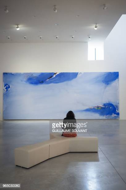 A visitor discovers the retrospective exhibition of the Nympheas of the French artist Olivier Debre on May 31 2018 at the CCCOD of Tours center...