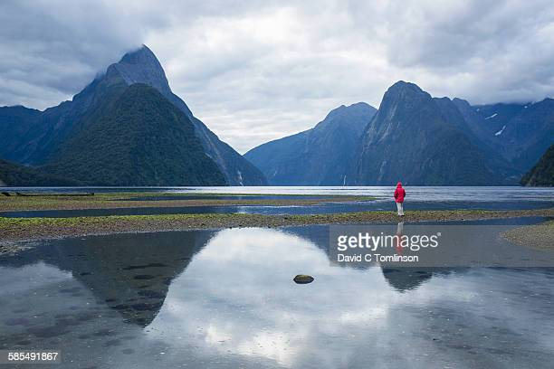 Visitor dwarfed by rugged mountains, Milford Sound