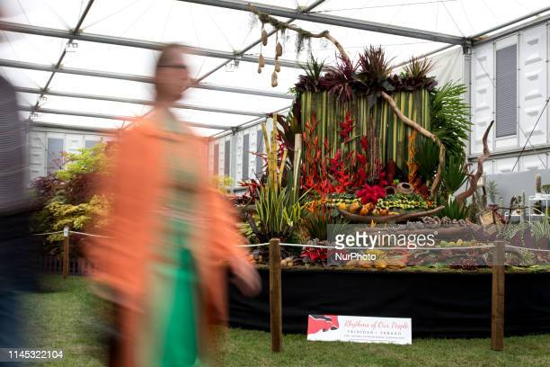 Visitor in Royal Hospital Chelsea gardens as the RHS Chelsea Flower Show opens in London, England on May 20, 2019.