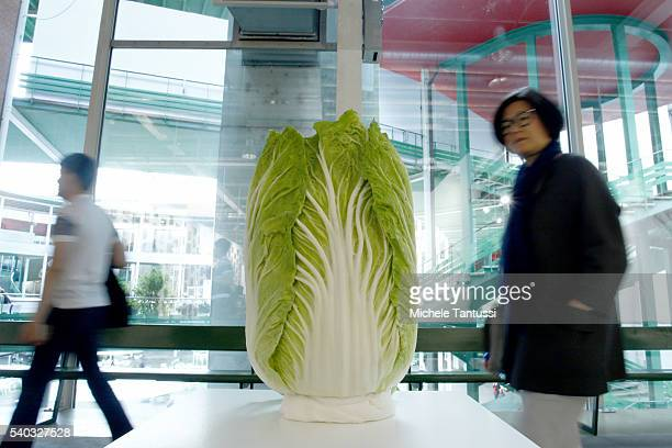 Visitor look at the artwork of the Artist Joao Maria Gusmao Pedro Paiva Cabbage Head exposed in the Galleries Area during the press preview for Art...