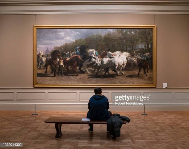 Visitor looks at a 1852-1855 painting called 'The Horse Fair' by French artist Rosa Bonheur December 18, 2020 at the Metropolitan Museum of Art in...