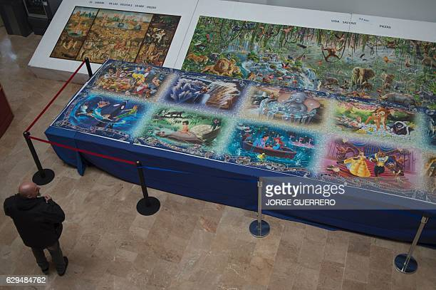A visitor looks at a 7x2 meter puzzle the biggest one in the world made with 40320 pieces and shown at the Jose Luis Cano Documentary Center in...