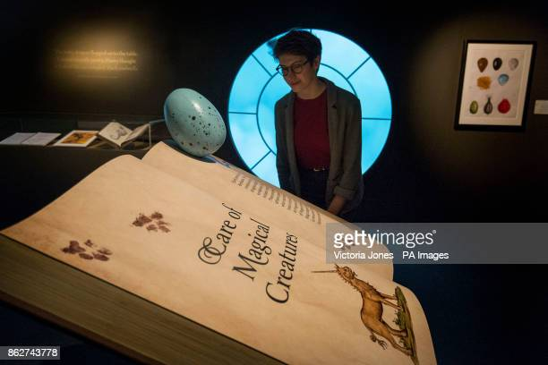 A visitor looks at a book of 'Care of Magical Creatures' during a press preview for the Harry Potter A History of Magic exhibition at the British...