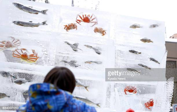 A visitor looks at fish frozen in ice blocks at the Sapporo Snow Festival in the Hokkaido city on Feb 6 just months after an amusement park in...
