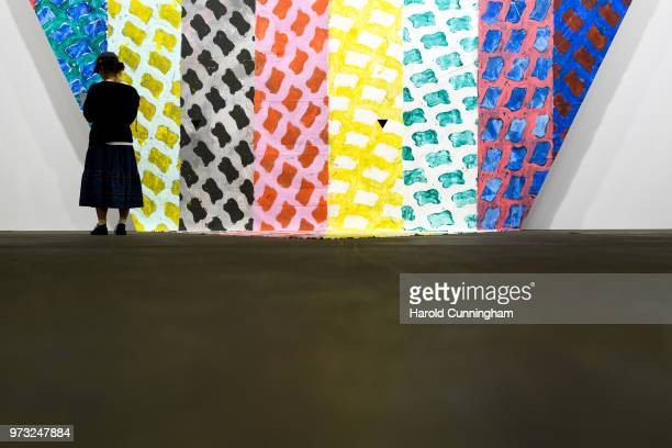 A visitor looks at the artwork of Claude Viallat 'Untitled' during the press preview for Art Basel at Basel Messe on June 13 2018 in Basel...