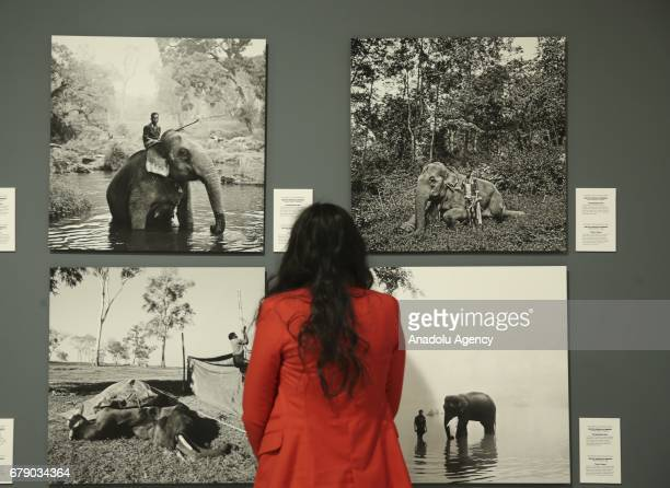 A visitor looks at the photos of Indian Photo Journalist Senthil Kumaran Rajendran who works for Trikaya Photos winner of the Third Prize in the...