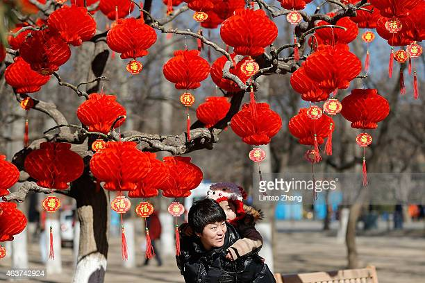 Visitor passes the trees decorated with red lanterns at the Spring Festival Temple Fair for celebrating Chinese Lunar New Year of Sheep at the Temple...