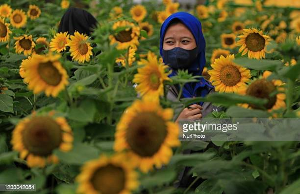 Visitor poses for photos at Bogor Sky Garden in Bogor, Indonesia on May 22, 2021. In the sunflower garden on the rooftop the shopping center building...