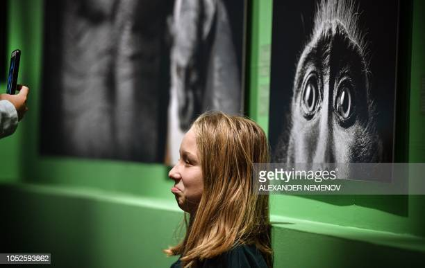 Visitor poses in front of a photograph 'Monkey Eyes' by Tim Flach, a British photographer who specialises in studio photography of animals, during...