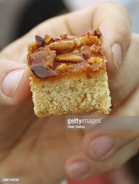 A visitor prepares to try a cake made with honey and almonds and topped with roasted male bees at a stand at an environmental fair at Schloss...