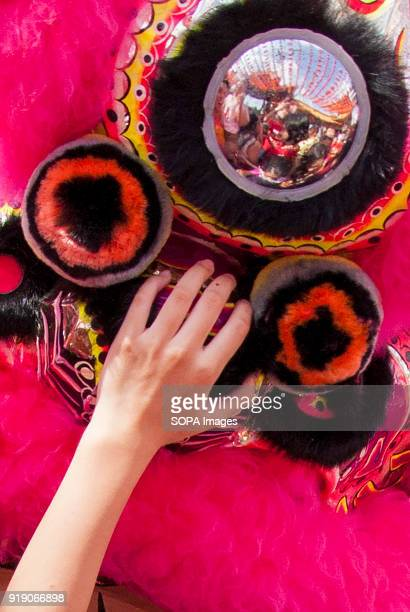 A visitor seen touching the lion head during a lion dance performance at the Thean Hou Temple on the first day of Chinese New Year Chinese New Year...