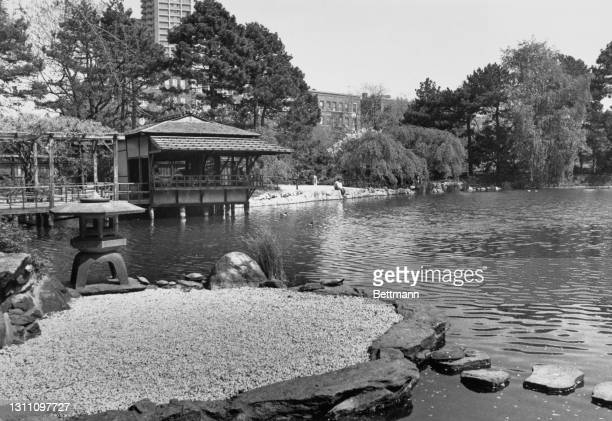 Visitor sits at the edge of the pool and takes in the ornamental beauty of the Japanese Hill-and-Pond Garden at Brooklyn Botanic Garden, Mount...