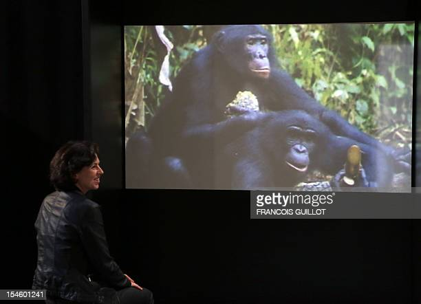 A visitor smiles after looking at a video of gibbon monkeys copulating presented at the Palais de la Decouverte in Paris on October 23 2012 as part...