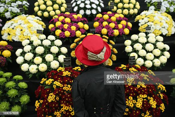 Visitor Sue Brown looks at a stand at the Chelsea Flower Show on May 20 2013 in London England The Chelsea Flower Show run by the RHS celebrates its...
