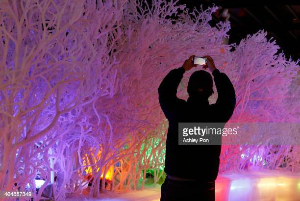 A visitor takes a photo at Fantasy Ice World on January 23 2014 in Taipei Taiwan Ice sculptors from the famous Harbin Ice Festival create the 7...
