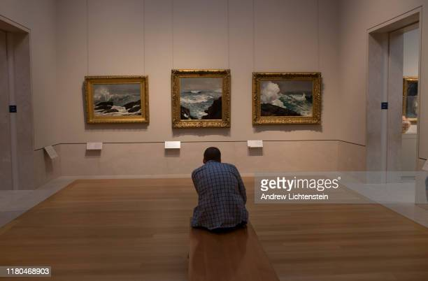 Visitor to the Metropolitan Museum of Art's American Wing contemplates a trio of Winslow Homer's ocean paintings on August 30, 2019 in New York City.