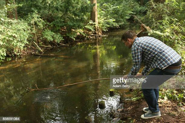 A visitor uses a stick to try to catch Louisiana crawfish or Procambarus clarkii in a pond in the Tiergarten park on August 24 2017 in Berlin Germany...