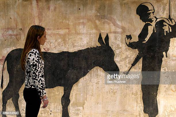 A visitor views Banksy's 'Donkey Documents' as it is displayed at the Chelsea Harbour Design Centre on September 21 2015 in London England Created by...