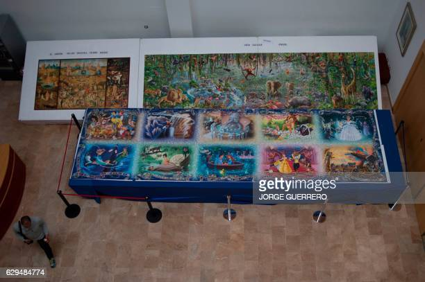 A visitor walks past a 7x2 meter puzzle the biggest one in the world made with 40320 pieces and shown at the Jose Luis Cano Documentary Center in...