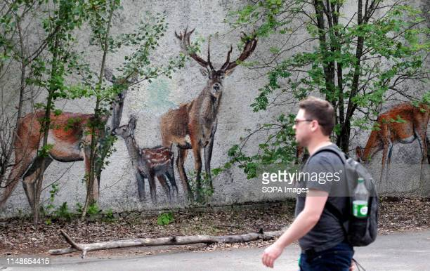 A visitor walks past a Graffiti at the Chernobyl exclusion zone in the abandoned city of Pripyat The HBO television miniseries Chernobyl premiered in...