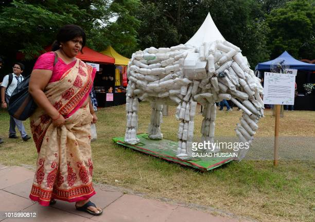 A visitor walks past an elephant sculpture made off the recycled plastic bottles during the 'Gaj Mahotsav' or Elephant festival in New Delhi on...
