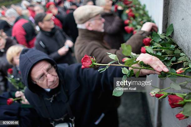 Visitors arrive to place roses into cracks in a stillexisting section of the Berlin Wall at the Bernauer Strasse memorial on the 20th anniversary of...