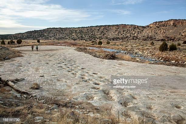 visitors at jurassic sauropod dinosaur tracksite purgatoire river colorado - sauropoda stock pictures, royalty-free photos & images