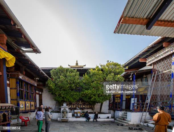 visitors at kyichu lhakhang temple, bhutan springtime - paro district stock pictures, royalty-free photos & images