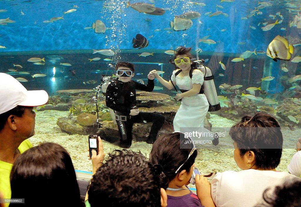 Visitors at the marine theme park in Manila Bay look at scuba divers dressed as a 'bride and groom' in Manila on June 6, 2010. The park staged the stunt called 'June Weddings' to attract more visitors. AFP PHOTO/Jay DIRECTO