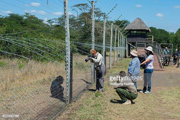 Visitors at the Sweetwaters Chimpanzee Sanctuary at Ol Pejeta Conservancy in Kenya