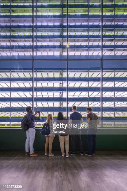 縦の庭の観覧の訪問者は精密農業を見る - スマート農業 ストックフォトと画像