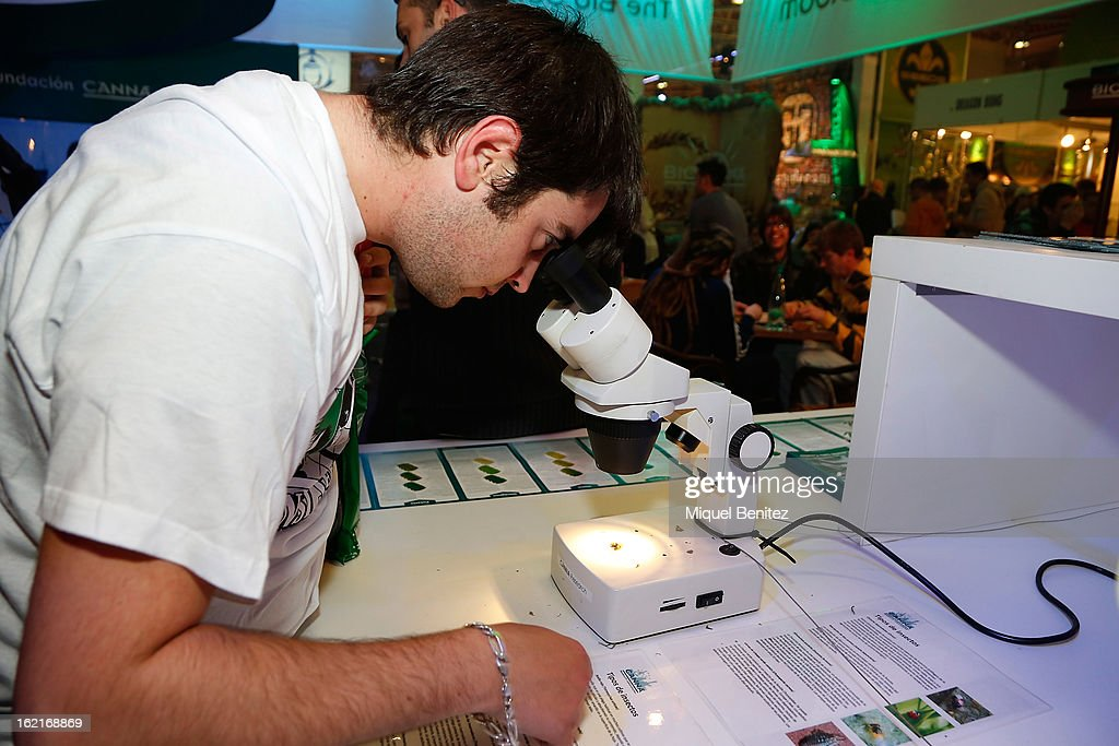 Visitors attend the Spannabis 2013 convention on hemp and marijuana products at the Feria de Cornella on February 16, 2013 in Barcelona, Spain.