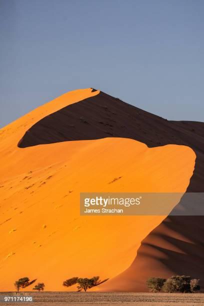 Visitors climb up the massive orange sand dune known as Big Daddy (325 metres), Sossusvlei area, Namib Desert, Namib-Naukluft, Namibia