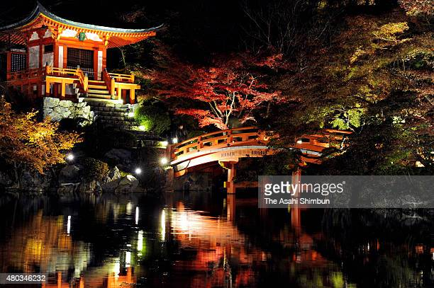 Visitors enjoy illuminated autumn colours at Daigoji Temple on November 25 2011 in Kyoto Japan