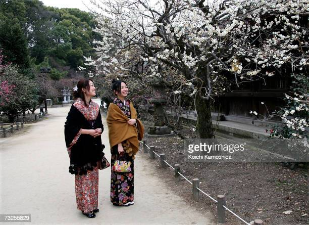 Visitors enjoy looking at the plum blossoms in full bloom at plum blossoms at Kitano Tenmangu Shrine on February 8 2007 in Kyoto Japan Due to the...