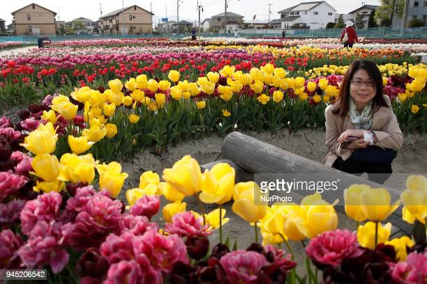 Visitors enjoy the blooming tulips at park in Tokyo Thursday April 12 2018