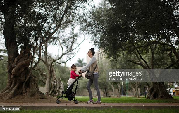 Visitors enjoy the El Olivar park in Lima on December 23 2014 Olive trees were brought from Spain 400 years ago and there are 1600 of them which...