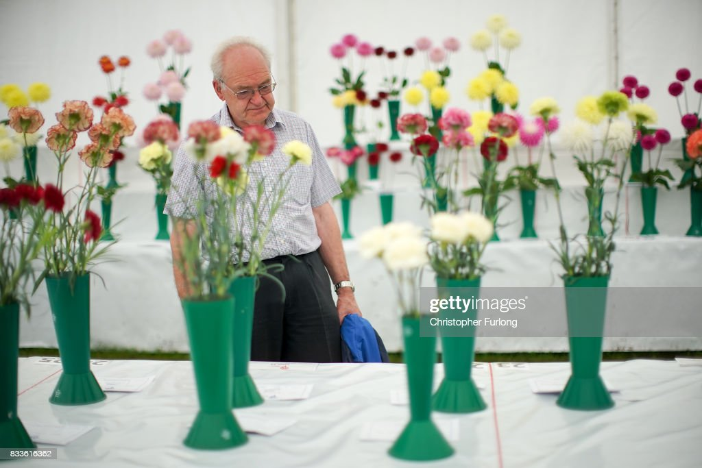 Visitors enjoy the fine weather as they tour the flower displays at Southport Flower Show on August 17, 2017 in Southport, England. Today is the opening day of Southport Flower Show which is is held over four days. The event is the UK's biggest independent flower show, attracting 80,000 visitors each year to see the flora and fauna at Victoria Park.