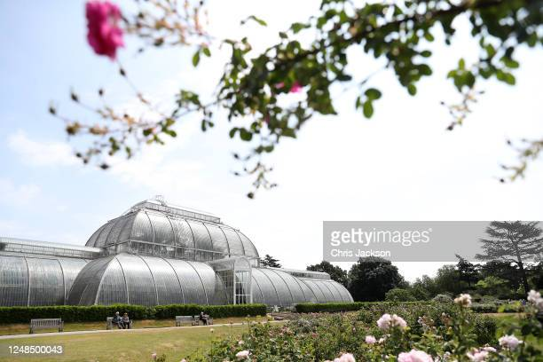 Visitors enjoy The Royal Botanic Gardens at Kew on June 09, 2020 in London, England. In line with the British government guidelines, the gardens...