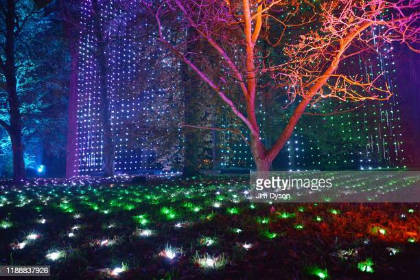Visitors follow an illuminated trail through Kew Gardens during a preview for the Christmas at Kew event on November 19 2019 in London England