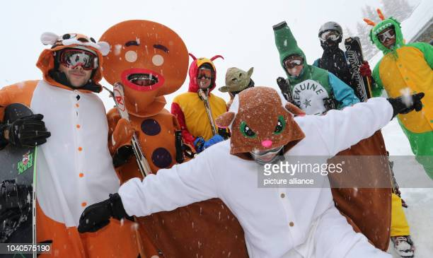 Visitors from Great Britain wear carnival costumes during a ski run in Haus near Schladming Austria 04 February 2013 The Alpine Skiing World...