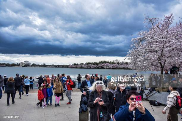 Visitors gather at the DC memorial for Reverend Dr Martin Luther King Jr near the Tidal Basin following a ceremonial wreath laying on the 50th...