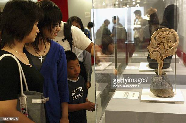 Visitors gaze at a preserved plastomic of a crosssection of a head at the Mysteries of the Human Body exhibition which displays some 170 specimens on...