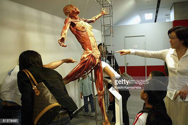 Visitors gaze at a preserved plastomic of an entire human specimen at the Mysteries of the Human Body exhibition which displays some 170 specimens on...