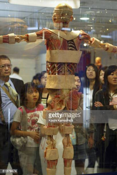 """Visitors gaze at a preserved plastomic whole body specimen at the """"Mysteries of the Human Body"""" exhibition which displays some 170 specimens on..."""