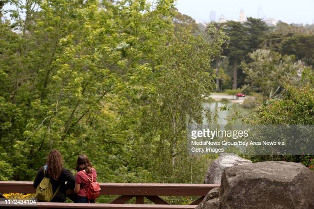 Visitors get a look down Huntington Falls from a bridge at Stow Lake inside Golden Gate Park in San Francisco Calif on Tuesday June 6 2017