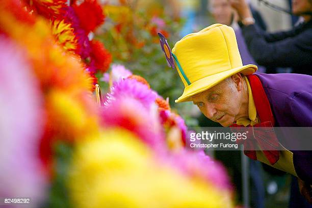 Visitors inspect the blooms as they reach their best and vie for a coveted prize at the Southport Flower Show on August 21 Southport, England. The...